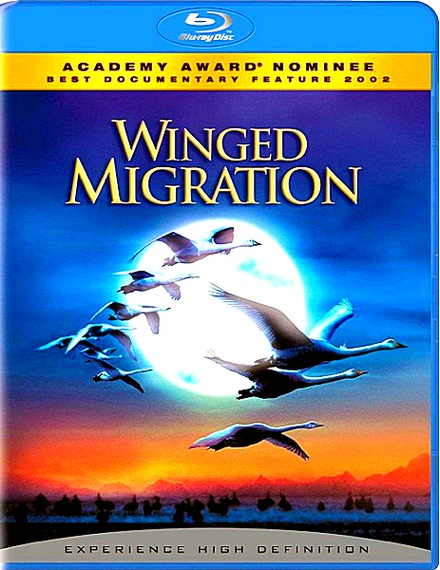 Птицы / Winged Migration / Le peuple migrateur [2001 / Документальный / BDRip 1080p]