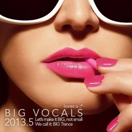 VA / BIG Vocals 2013.5 [2013]